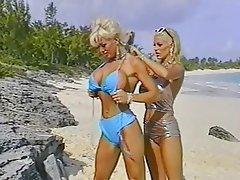 Beach, Big Boobs, Group Sex, Outdoor